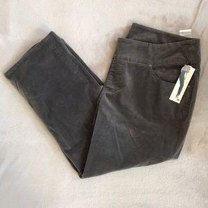 NWT JAG Jeans pants